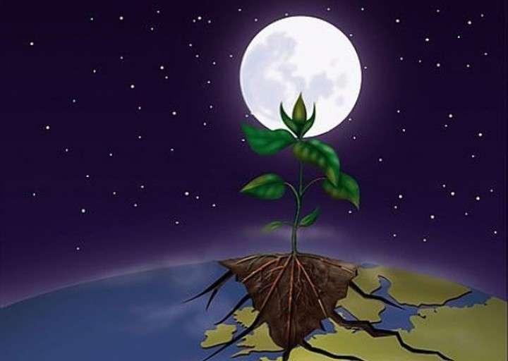 Super Deco, idées déco pas cher original Jardiner avec la lune : on vous dévoile tous les secrets  Super Deco, idées déco pas cher jardiner-avec-lune-decembre-l650-h474-c-1354180154-l720-h512-c Jardiner avec la lune : on vous dévoile tous les secrets